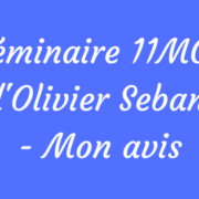 11 MCP FORMATION Olivier Seban